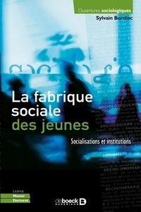 Sylvain Bordiec - La fabrique sociale des jeunes - Socialisations et institutions.