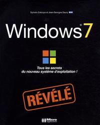 Sylvain Caicoya et Jean-Georges Saury - Windows 7 révélé.