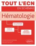 Sylvain Carras - Hématologie - Tout le programme en images et en schémas.