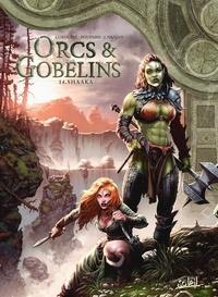 Sylvain Cordurié et Jean-Charles Poupard - Terres d'Arran : Orcs & Gobelins Tome 14 : Shaaka.