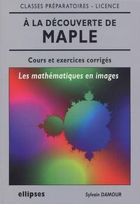 Sylvain Damour - A la découverte de Mapple - Les mathématiques en images, cours et exercices corrigés.