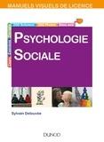 Sylvain Delouvée - Manuel visuel - Psychologie sociale - 2e éd.