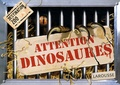 Sylvie Bézuel et André Boos - Attention dinosaures.
