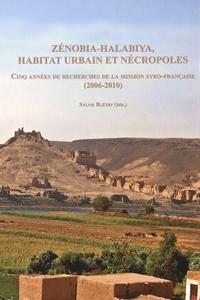 Sylvie Bletry - Zénobia-Halabiya, habitat urbain et nécropoles - Cinq années de recherches de la mission syro-française (2006-2010). 1 Cédérom