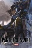 Ta-Nehisi Coates et Chris Sprouse - La panthère noire Tome 2 : Une nation en marche - 2e partie.