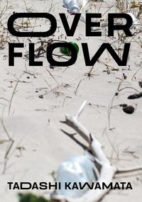 Tadashi Kawamata - Over Flow.