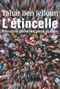 Goodtastepolice.fr L'étincelle - Révoltes dans les pays arabes Image