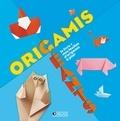 Tania Capron - Origamis Géants - Le livre + mes feuilles d'origamis à plier.