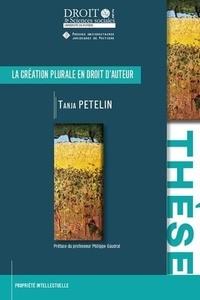 Tanja Petelin - La création plurale en droit d'auteur - Contribution à l'étude de l'indivision.