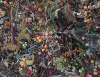Tanya Marcuse - Fruitless Fallen Woven.