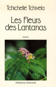 Tchivela Tchichelle - Les fleurs des lantanas.