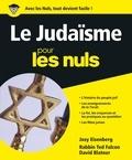 Ted Falcon et David Blatner - Le Judaïsme pour les Nuls.