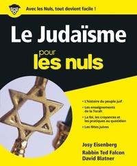 Le Judaïsme pour les Nuls.pdf