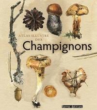 Terres éditions - Atlas illustré des champignons.