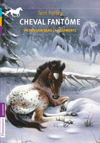 Terri Farley - Cheval fantôme Tome 5 : Un poulain dans la tourmente.