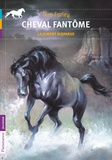 Terri Farley - Cheval fantôme Tome 7 : La jument disparue.