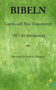 Theospace - 1917 års bibelöversättning - Gamla och Nya Testamentet.