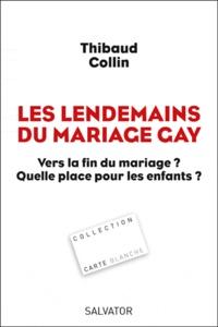 Thibaud Collin - Les lendemains du mariage gay - Vers la fin du mariage ? Quelle place pour les enfants ?.