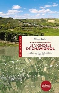 Thibaut Boulay - Le vignoble de Chavignol - Voyage dans un paysage.