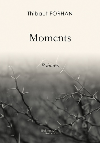 Thibaut Forhan - Moments.