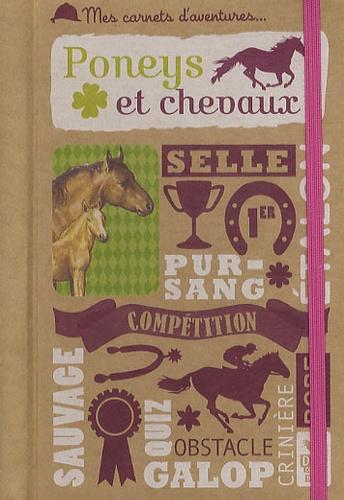 Thierry Brue - Poneys et chevaux.
