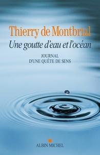 Thierry de Montbrial - La Goutte d'eau et l'océan.