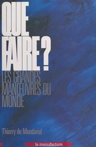 Thierry de Montbrial - Que faire ? - Les grandes manoeuvres du monde.