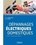 Thierry Gallauziaux et David Fedullo - Dépannages électriques domestiques - Installation & appareils électroménagers.