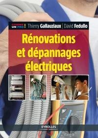 Thierry Gallauziaux et David Fedullo - Rénovations et dépannages électriques.