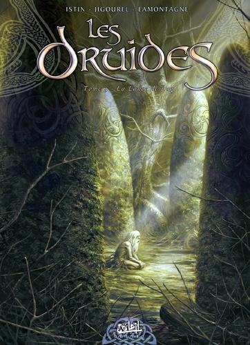Les Druides Tome 03 : La lance de Lug