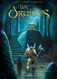 Les Druides Tome 05 : La pierre de destinée.