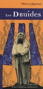 Thierry Jigourel - Les Druides - Modernité d'une tradition millénaire.