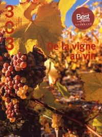 Thierry Pelloquet - De la vigne au vin.