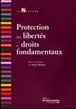 Thierry-Serge Renoux - Protection des libertés et droits fondamentaux.