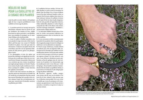 Le chemin des herbes. Du Midi à l'Atlantique, identifier et utiliser 80 plantes sauvages médicinales, alimentaires, tinctoriales