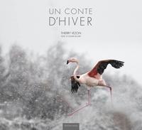 Thierry Vezon - Un conte d'hiver.