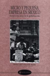 Thomas Calvo et Bernardo Méndez - Micro y pequeña empresa en México - Frente a los retos de la globalización.