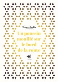 Thomas Scotto - Un poussin mouillé au bord de la route.