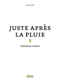 Thomas Vinau - Juste après la pluie.