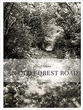 Thomas Zander - An Old Forest Road.