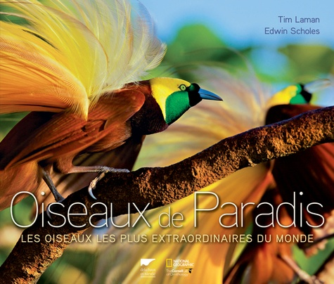 Tim Laman et Edwin Scholes - Oiseaux de paradis - Les oiseaux les plus extraordinaires du monde.