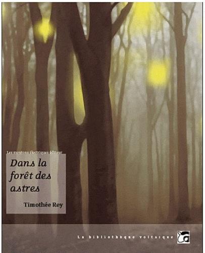 Timothée Rey - Dans la forêt des astres.