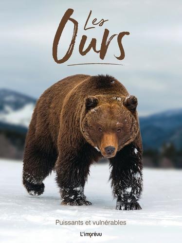 Les ours. Puissants et vulnérables