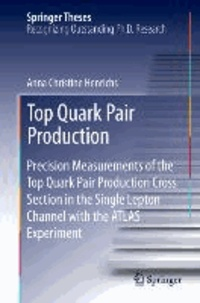 Top Quark Pair Production - Precision Measurements of the Top Quark Pair Production Cross Section in the Single Lepton Channel with the ATLAS Experiment.