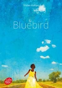 Tristan Koëgel - Bluebird.