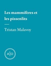Tristan Malavoy - Les mammifères et les pissenlits.