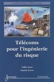 Tullio Tanzi et Patrick Perrot - Télécoms pour l'ingénierie du risque.