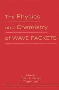 Checkpointfrance.fr THE PHYSICS AND CHEMISTRY OF WAVE PACKETS Image