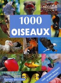 Ulrike Schöber - 1000 oiseaux.