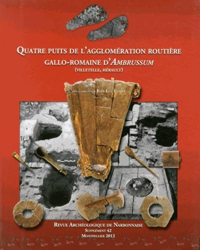 Jean-Luc Fiches - Revue archéologique de Narbonnaise Supplément 42 : Quatre puits de l'agglomération routière gallo-romaine d'Ambrussum (Villetelle, Hérault).